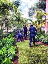 Reef Tropical Landscaping