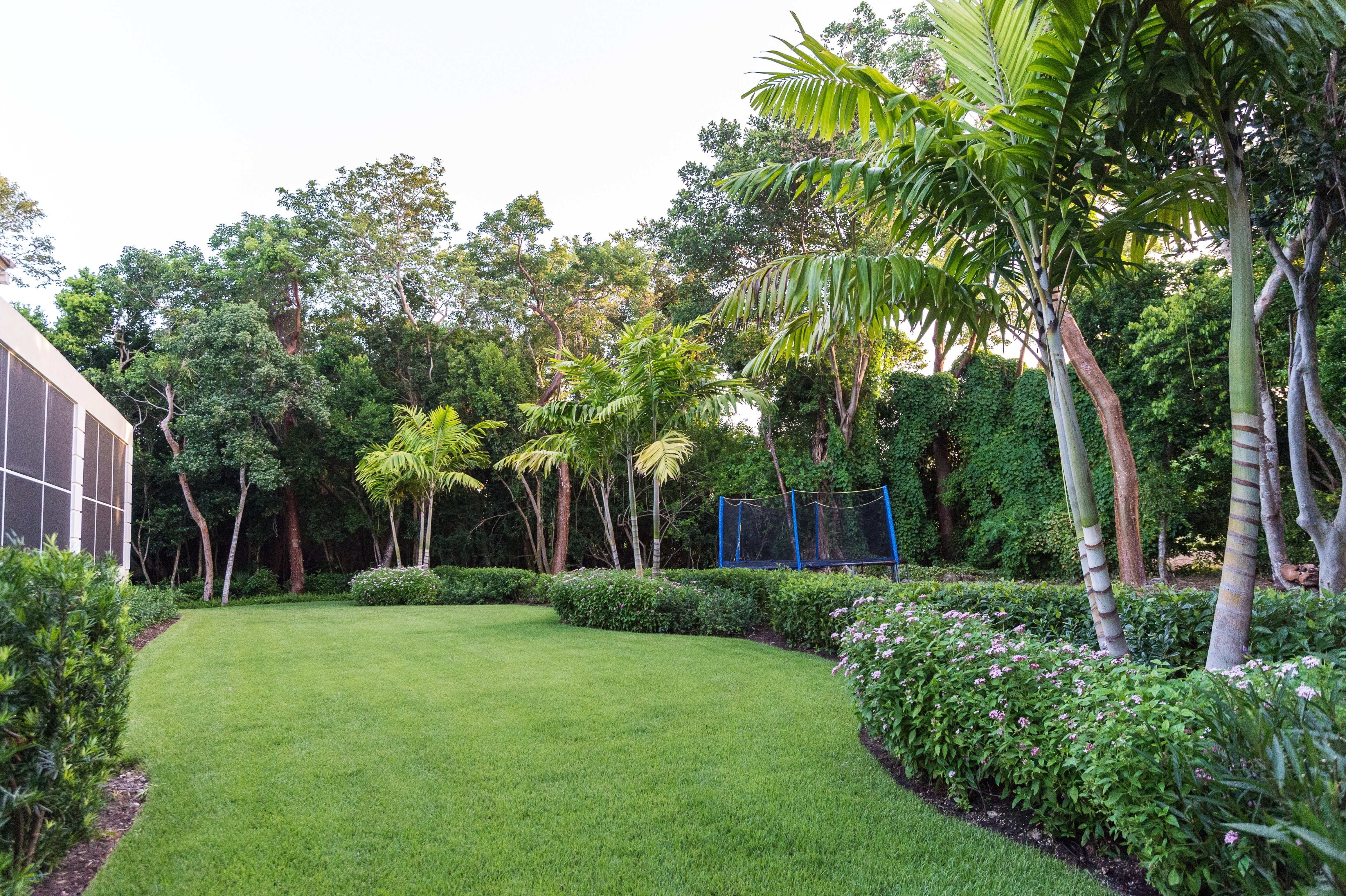 Florida lawn with irrigation system