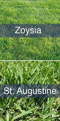 Zoysia Grass Or St Augustine Grass In Florida Here S