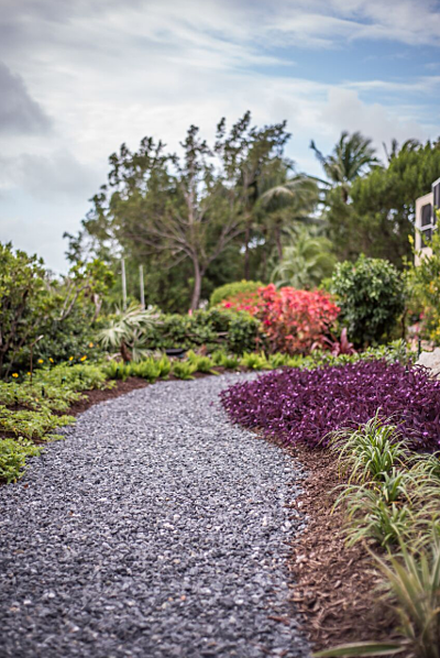 Reef Tropical designs swales throughout a property and uses dry beds of decorative stone to unify them.